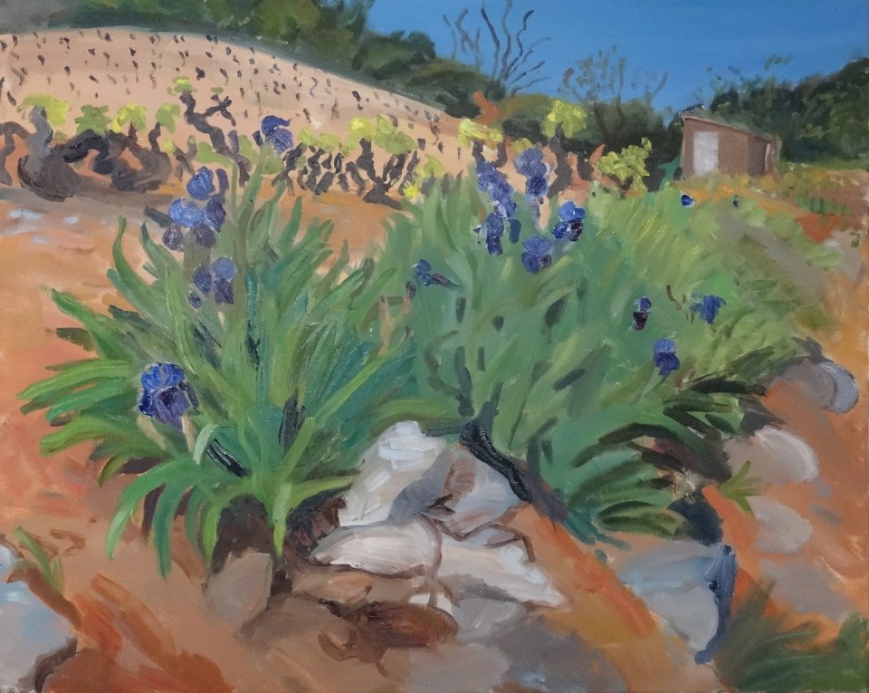 'Irises on the road to Fabrezan', oil on canvas, 62 x 76 cm