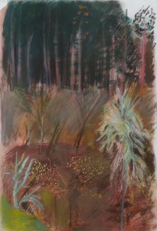 'Dans le foret' aquarelle